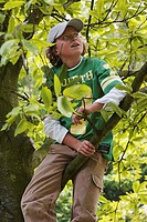 Close-up of a boy sitting on a branch