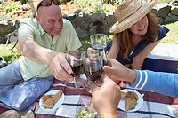 Close-up of a mature couple and their friends toasting with wineglasses