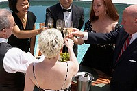 High angle view of three mature couples toasting with champagne flutes