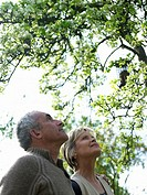 Mature couple standing in garden looking upwards, low angle view