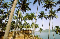 India, Goa, beach huts on Palolem Beach