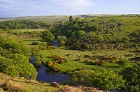 River Dart Dartmoor National Park Devon Great Britain