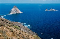 northern coast of Tenerife Island, Canarian Islands, Spain