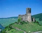Bernkastel Castle & Mosel River & Vineyards, Bernkastel, Rhineland / Mosel Valley, Germany