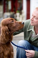 Young man looking at red-setter dog