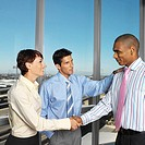 business executives shaking hands standing near a window