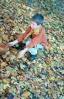 Little boy in the autumnal wood, forest, squatting on the ground (thumbnail)