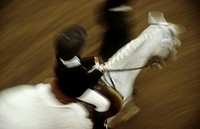 A little child, 5-10 years old, riding a horse at a horse show, the horse is leaded by an adult, blurred