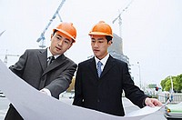Businessmen looking at blue print