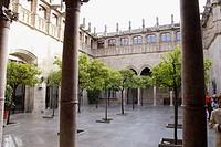 ´Pati dels Tarongers´. Gothic courtyard. Palau de la Generalitat. Plaça de Sant Jaume. Barcelona. Spain.