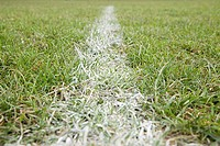 Line of a football pitch