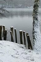 Landscape, Germany, Nature reserve, Kottenforst Ville, Bruehl