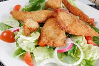 Chicken with salad, close-up