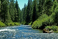 Oregon, beautiful Metolius river