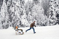Man pulling sledge with woman holding christmas tree