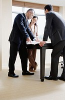 Business People Collaborating in the Office (thumbnail)