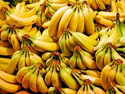 Close-up of a massive group of bananas bunched together