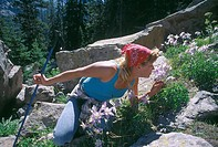A young woman stops to smell a blue columbine (Aquilegia coerulea) while hiking in Rocky Mtn Nat´l Park, CO