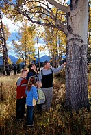 A family of five look at a fall-colored aspen leaf while hiking in Rocky Mtn Nat´l Park, CO.