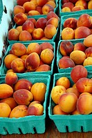 Cardboard containers of peaches at a farmer's market