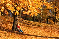 Beautiful blond sitting under tree on fallen autumn leaves in Sweden in September