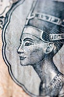 Queen nefertiti. Close up of egyptian currency