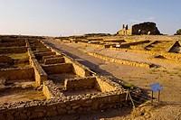 Recópolis archaeological park. Zorita de los Canes. Guadalajara province, Spain.