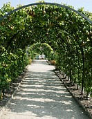 Pear arch at West Dean Gardens
