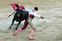 Bullfight,Acapulco,Mexico