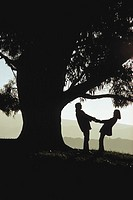 Silhouete shot of a man and woman happily holding hands as they look at each other beside a large eucalyptus tree.
