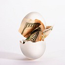 Egg with Dollar