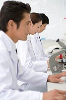 Three scientists working at the desk, side view, differential focus