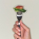 Hand Holding Fork with Food