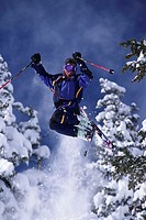 Skier in Mid Air