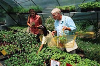 Shoppers Looking at Plants on Herb Farm