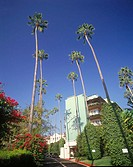 Beverly hills Hilton hotel, Beverly hills, Los angeles, California, USA
