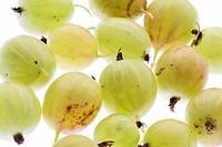 Gooseberries, detail,   Food, fruit, fruits, shrub fruits, berries, Ribes uva-crispa, green, rich in vitamins, vitamin C, vitamin-containing, quietly ...