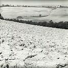 Italy, Tuscany, Crete Senesi,  Hill landscape, field, detail, s/w,   Tuscany landscape, landscape, field landscape, fields, soil, ground utilization, ...