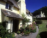 Cottage, Selworthygreen village, Somerset, England, UK