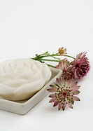 Bars of soap and astrantia flowers