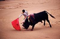 Spain, Madrid, bullfight in Las Ventas arenas