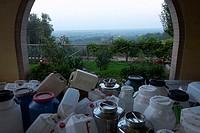italy, tuscany, castagneto carducci, oil mill