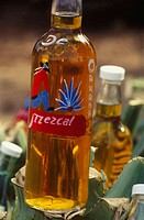 Bottles of mezcal. Mezcal is a schnapps distillated in Oaxaca from the Agave angustifolia haw cone. Different kinds of Agaves are used in Mexico to pr...