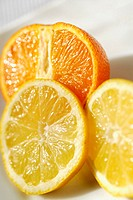 Close-up of slices of lemon and orange