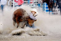 Cowboys participate in Rodeo bull event