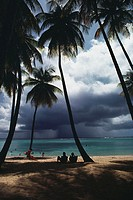 View of a scenic beach on a cloudy day, Pigeon Point, Tobago