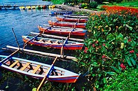High angle view of rowboats moored at a riverbank, Bali, Indonesia (thumbnail)