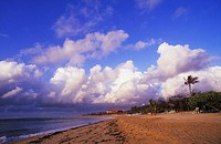 Panoramic view of the beach, Bali, Indonesia (thumbnail)