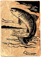 Fish jumping out of the water on vintage paper background
