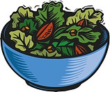 A bowl of green salad leaves